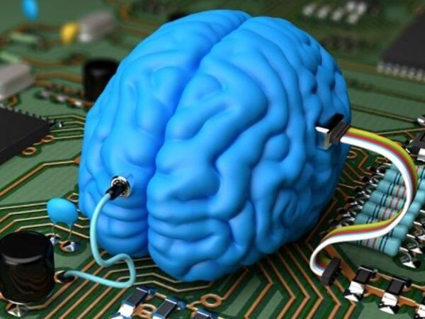 Artificial Intelligence to Accelerate Brain Research