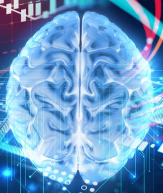 Researcher Finds a Better Way to Explore the Brain