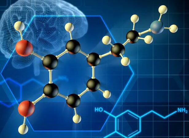 Consciousness Research: 'Dopamine' Plays a Key Role